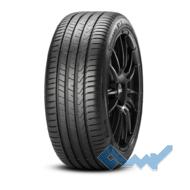 Pirelli Cinturato P7 (P7C2) 215/60 R16 99V XL
